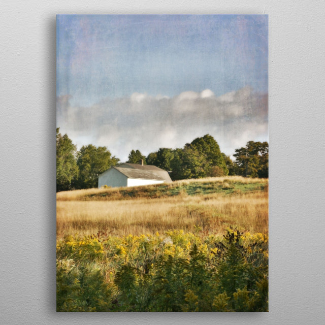 White Barn in Late Summer Meadow metal poster