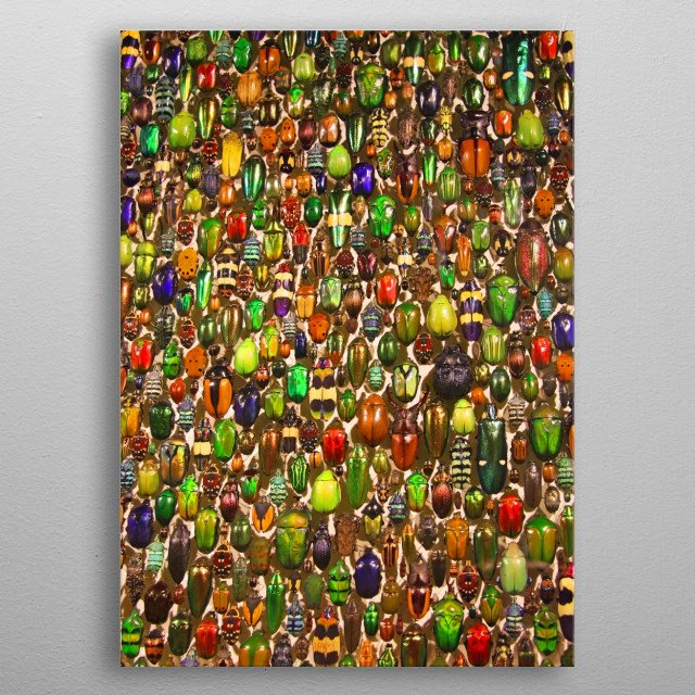 This marvelous metal poster designed by brookeryanphoto to add authenticity to your place. Display your passion to the whole world. metal poster
