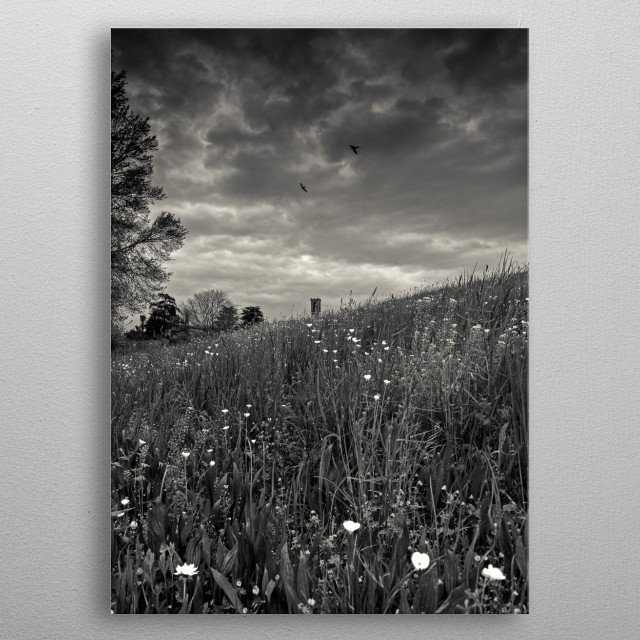 Swallows over the hill metal poster