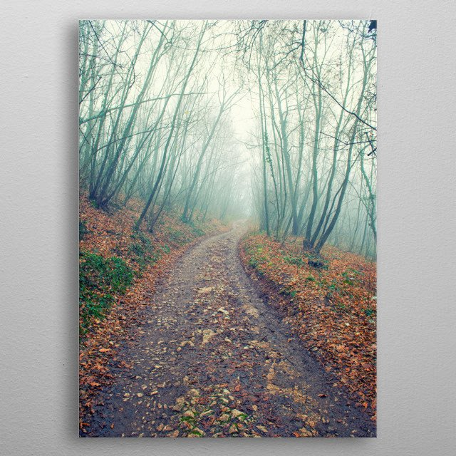 The winter fog on wood metal poster