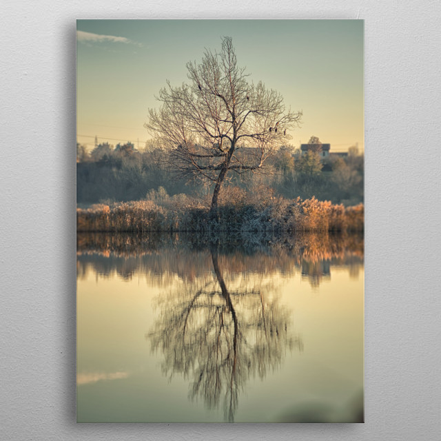 The tree alone metal poster