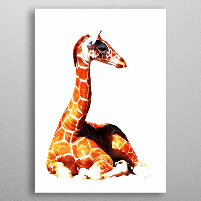 High-quality metal wall art meticulously designed by steffilouis would bring extraordinary style to your room. Hang it & enjoy. metal poster