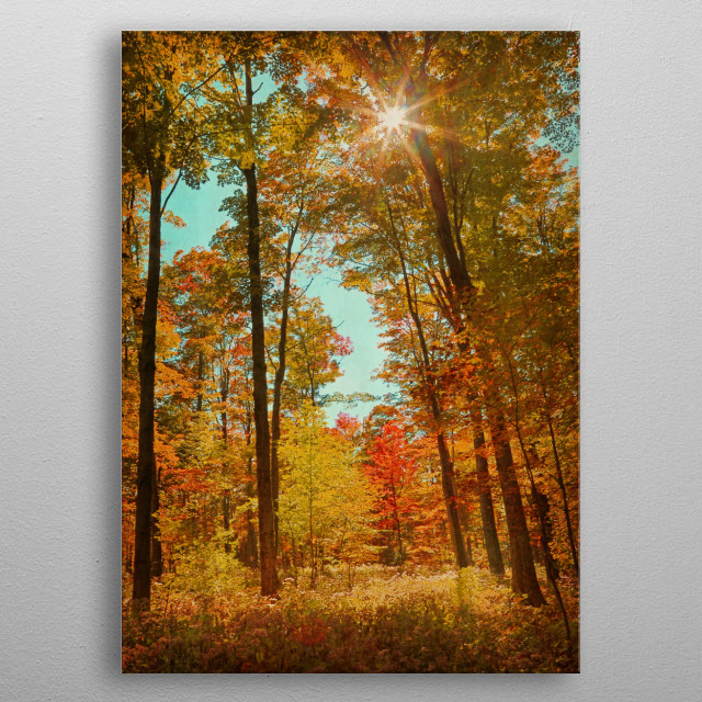 Vibrant Fall Forest metal poster