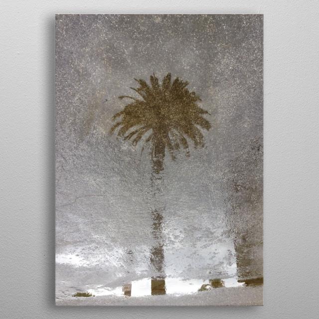 Rainy Day Palm Tree metal poster