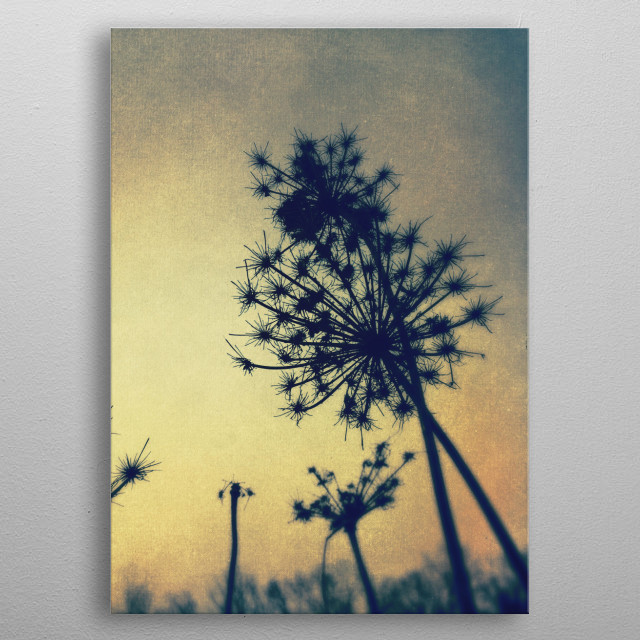 This marvelous metal poster designed by oliviastclaire to add authenticity to your place. Display your passion to the whole world. metal poster