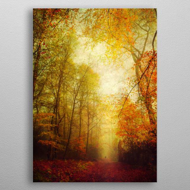 Colorful forest in fall metal poster