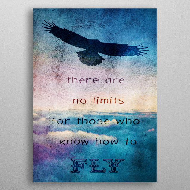 No Limits to those who FLY metal poster
