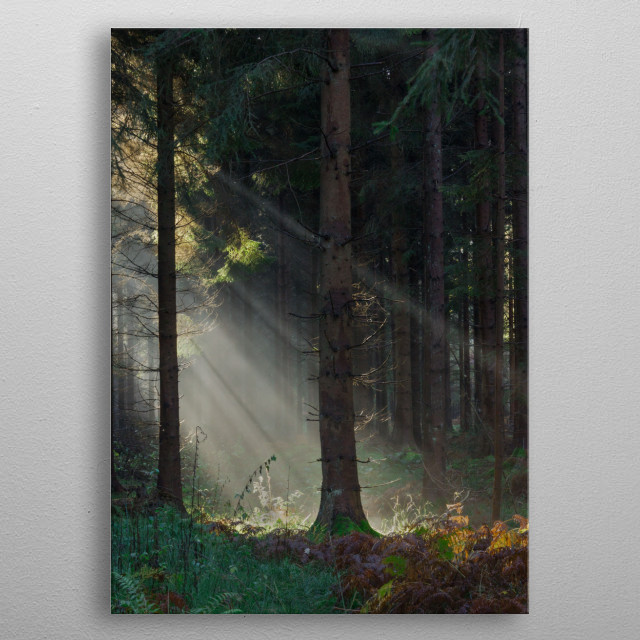 Light Beams metal poster