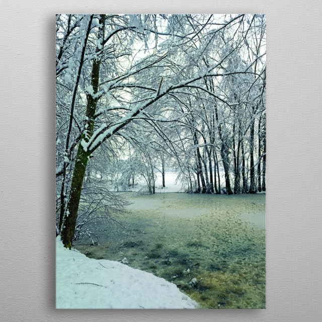 Iced pond metal poster