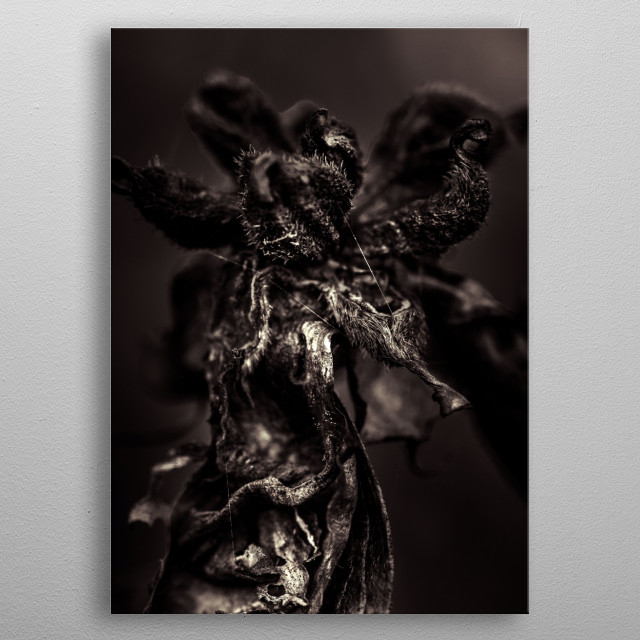 Fascinating metal poster designed by Ulf Härstedt. Displate has a unique signature and hologram on the back to add authenticity to each design. metal poster