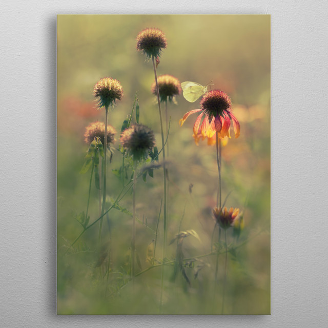 Fascinating  metal poster designed with love by jablam. Decorate your space with this design & find daily inspiration in it. metal poster