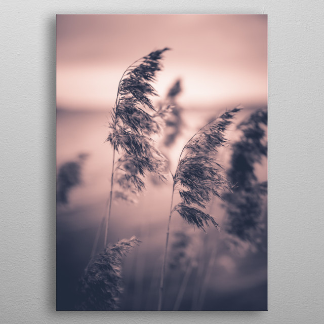 High-quality metal wall art meticulously designed by happymelvin would bring extraordinary style to your room. Hang it & enjoy. metal poster