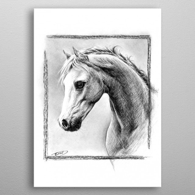 Horse portrait | Charcoal drawing metal poster