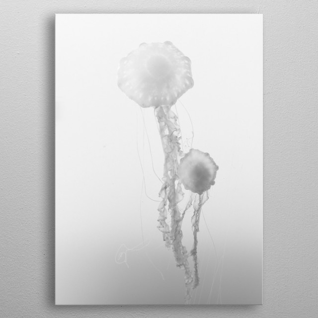 High-quality metal print from amazing Black And White collection will bring unique style to your space and will show off your personality. metal poster