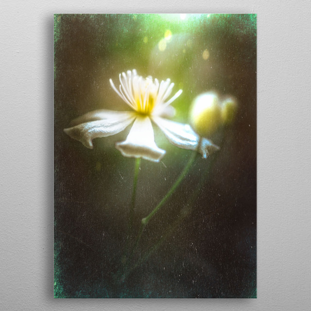 High-quality metal print from amazing Im Still collection will bring unique style to your space and will show off your personality. metal poster