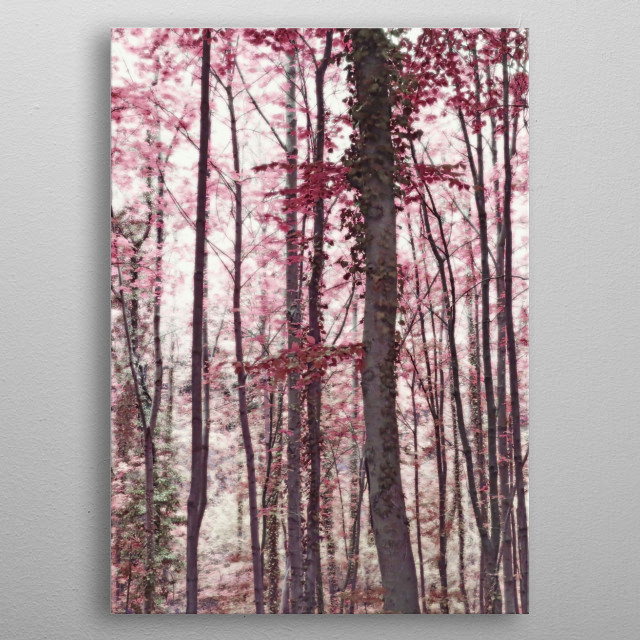 Ethereal Austrian Forest in Marsala Burgundy Wine. Photographed in Salzburg on the walking trail to Hohensalzburg Castle. metal poster
