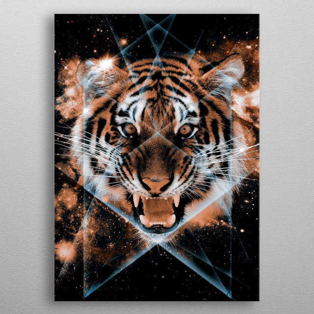 Another study in my digital art series, Beautiful Symmetry called Tigris metal poster