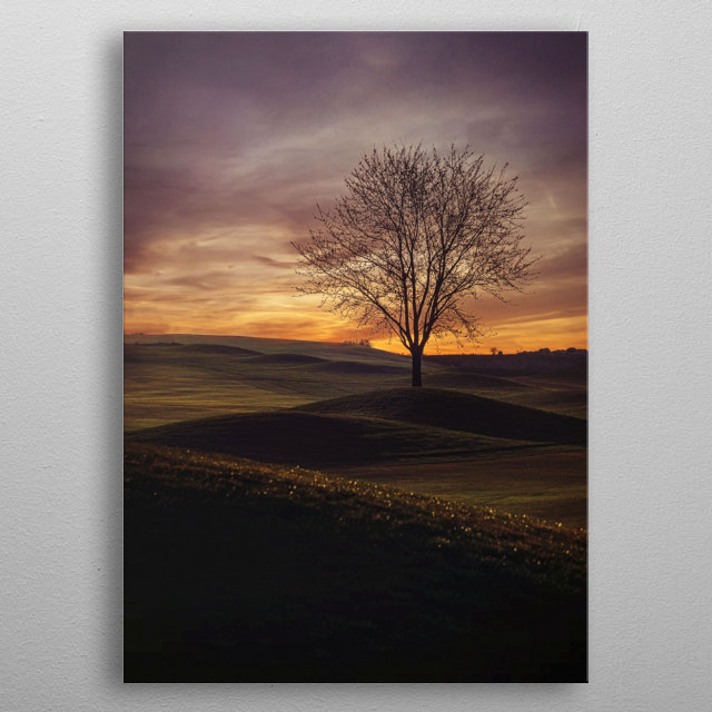 High-quality metal print from amazing Fine Art collection will bring unique style to your space and will show off your personality. metal poster
