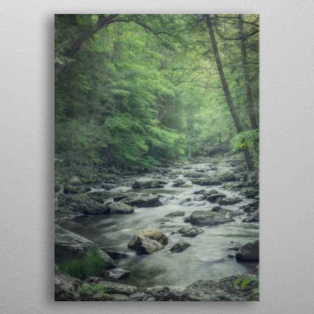 Misty Forest Stream metal poster