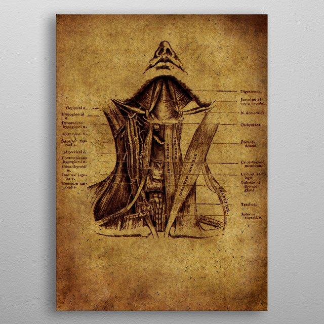 Anatomic8 metal poster