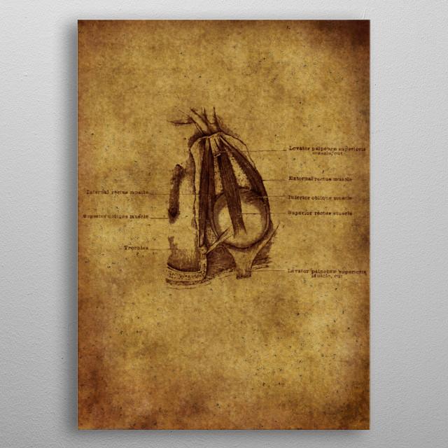 Anatomic15 metal poster