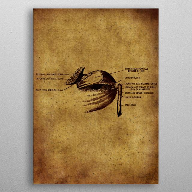 Anatomic14 metal poster