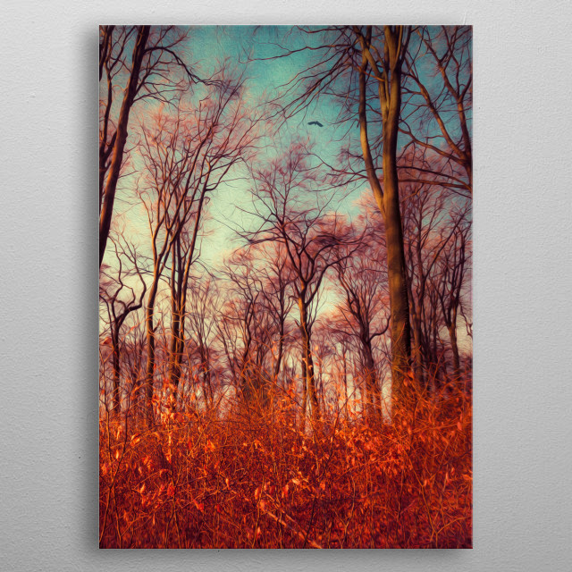 High-quality metal print from amazing Forest Mystery collection will bring unique style to your space and will show off your personality. metal poster