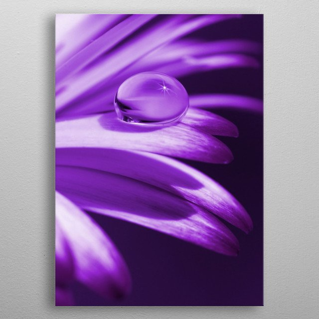 Flower leafs with drops metal poster