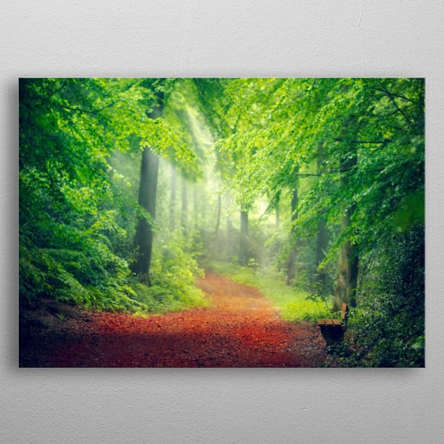 Fresh spring forest in morning light metal poster
