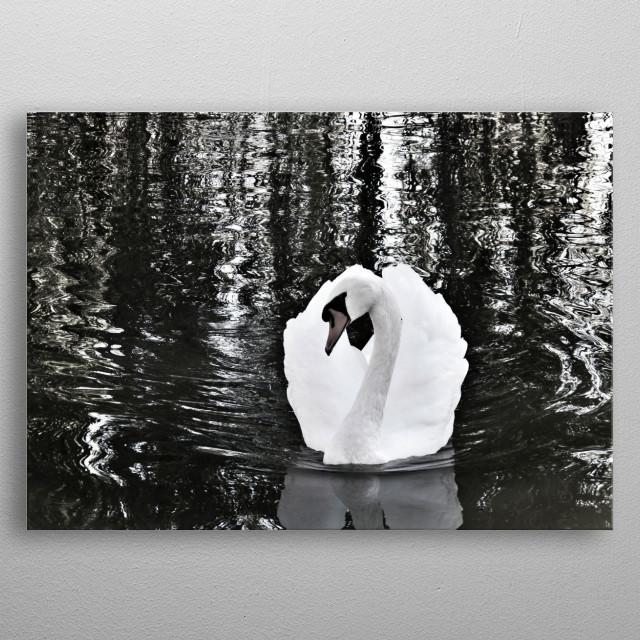 swan pose metal poster