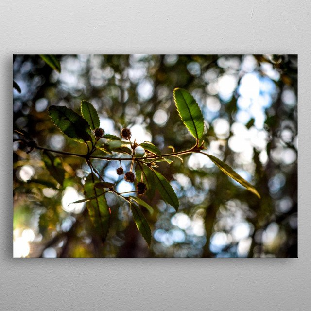 High-quality metal wall art meticulously designed by aerobimike would bring extraordinary style to your room. Hang it & enjoy. metal poster