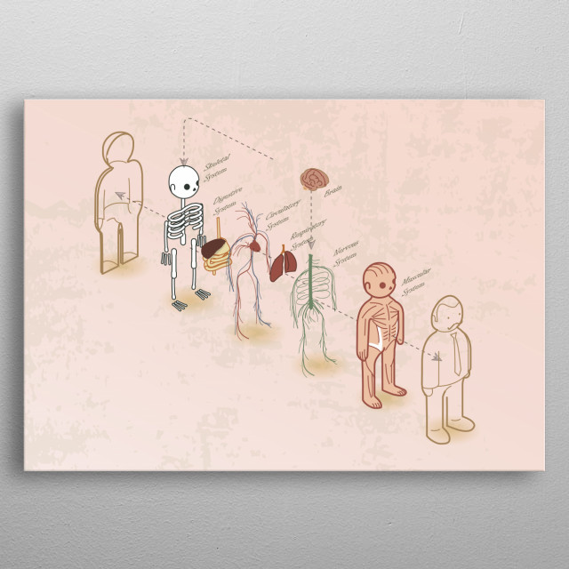 anatomy 101 - exploded metal poster