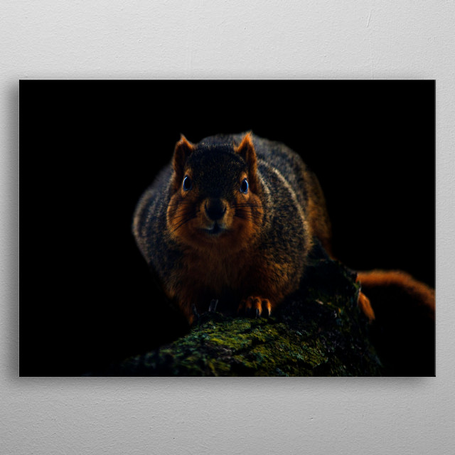 High-quality metal print from amazing Cute Things collection will bring unique style to your space and will show off your personality. metal poster
