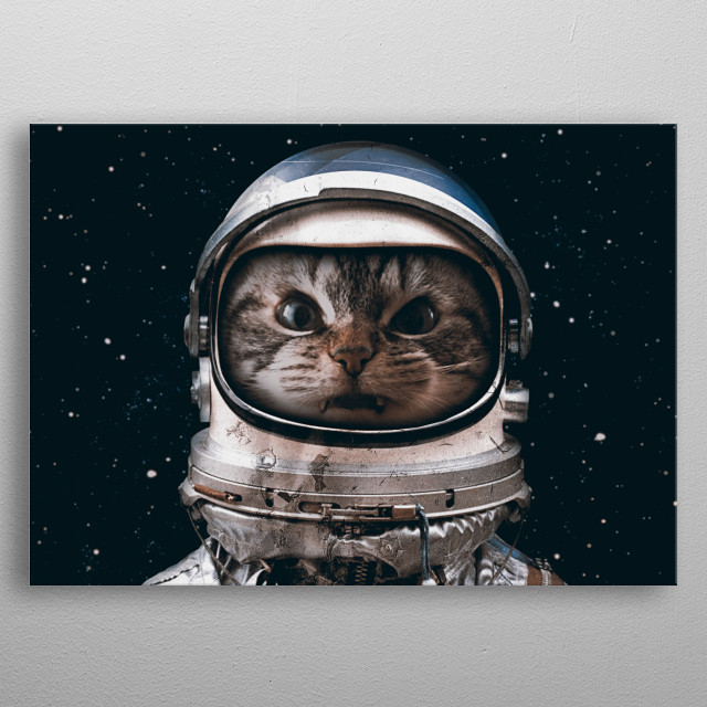 Space Catet metal poster