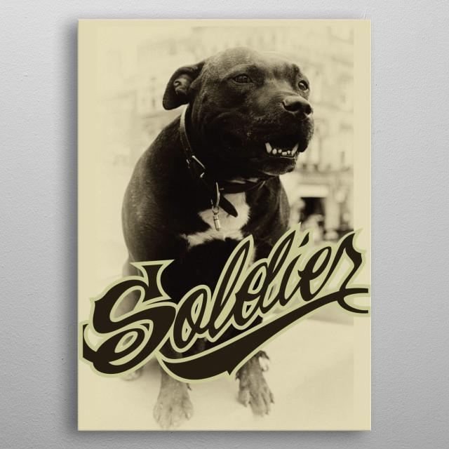 SoldierBull metal poster