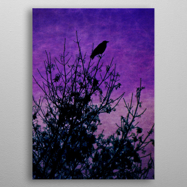 A raven silhouetted on a tree top against a deep purple grungy sky fading to violet. metal poster