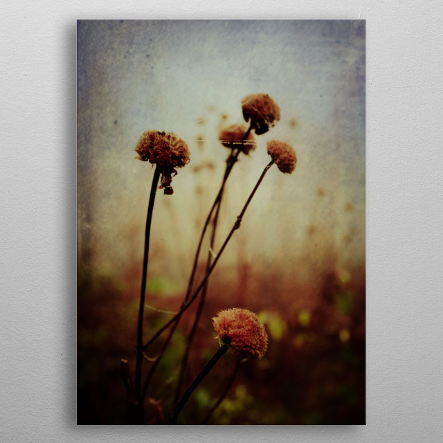 Fascinating  metal poster designed with love by oliviastclaire. Decorate your space with this design & find daily inspiration in it. metal poster