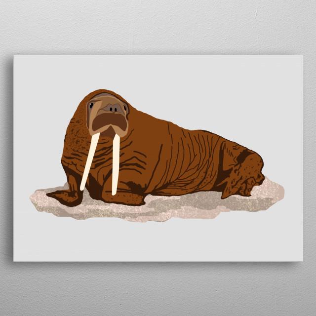 Pacific Walrus metal poster