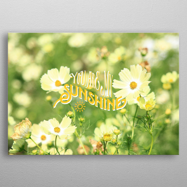 """You Are My Sunshine Pretty Yellow Cosmos Flowers - Pretty, cheery, light yellow cosmos in a large flower field. The text says """"You Are My S... metal poster"""
