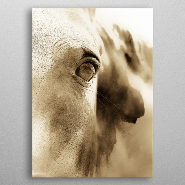 A  modern  abstract of a horses head by Clare Bevan  Photography. metal poster