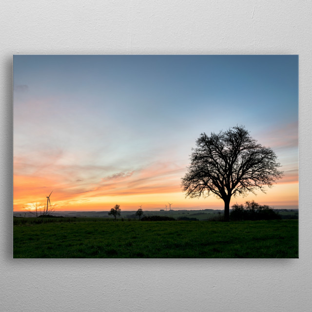 Photography Landscape Nature Tree Shadow Sunset beautiful sunrise poetic  metal poster