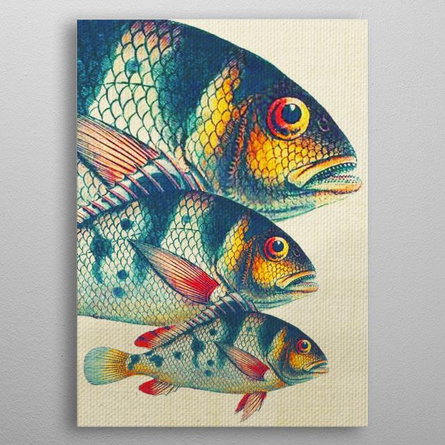 Fish Classic Designs 3 metal poster