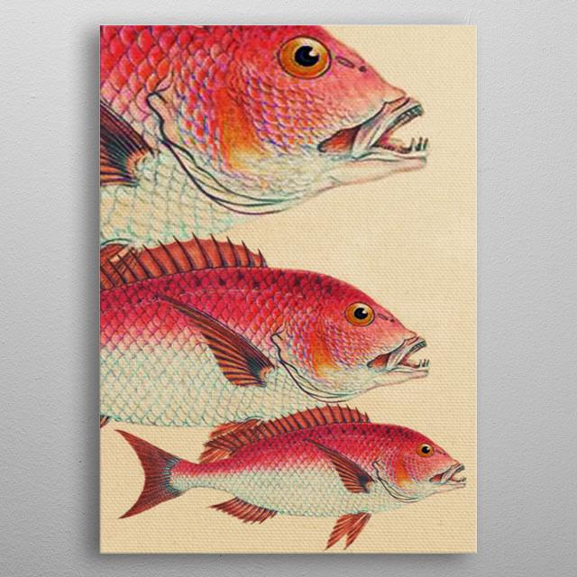 Fish Classic Designs 7 metal poster