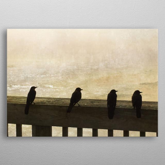 Four Birds metal poster