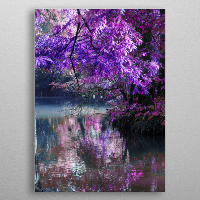 reflection on pond in autumn metal poster