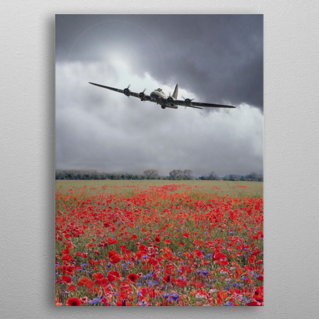 A single B17 Bomber over a field of flowering Poppies.  A tribute to all those who served during the war metal poster