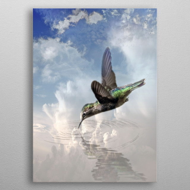 The Hummingbird metal poster