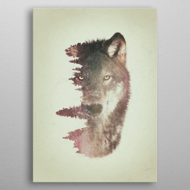 Wolf and habitat double exposure artwork. metal poster