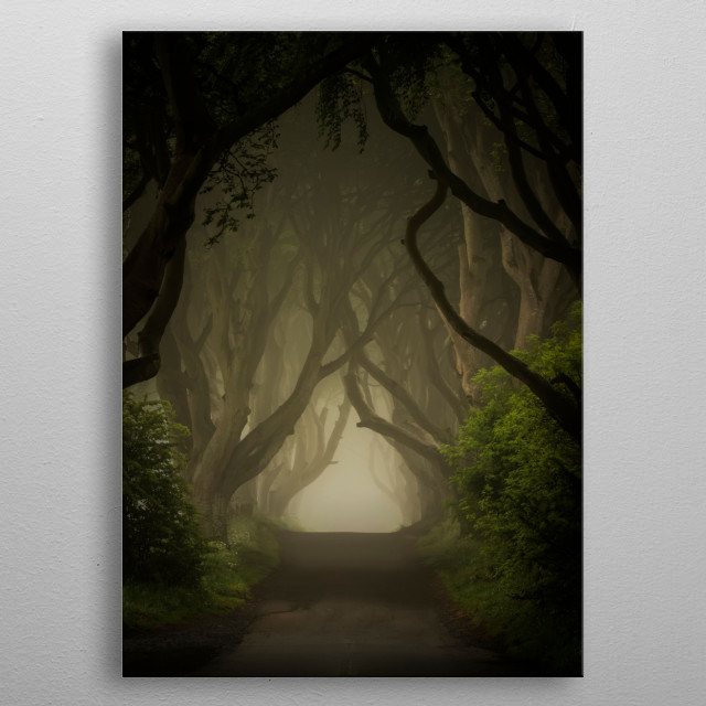 Dark Hedges in northern Ireland. Got very popular after the Game of Throne was filmed here metal poster