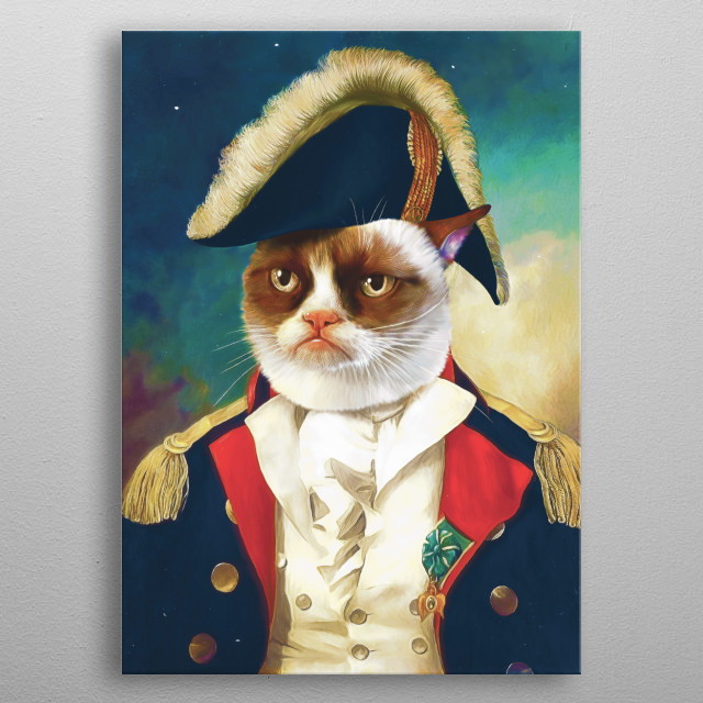 Grumpy cat, Cats, animals, war, captain, art, portrait, funny, kids metal poster